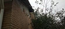 Fasad-house-14